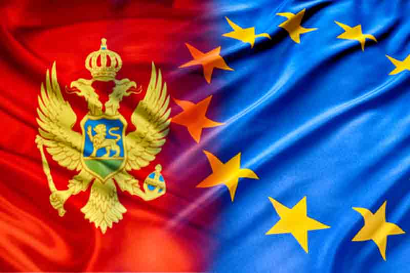 Head of the Parliament of Montenegro appreciated the importance of joining the EU